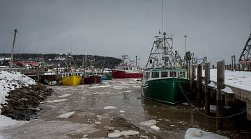 Boats in icy New Brunswick harbour