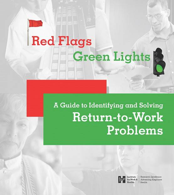 Cover of Red Flags and Green Lights guide, using red and green to highlight the type